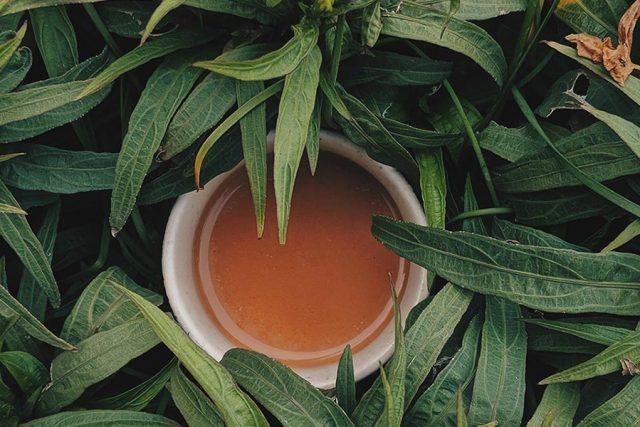 thé-japonais