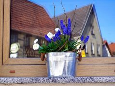 Nos conseils pour bien nettoyer vos fenêtres